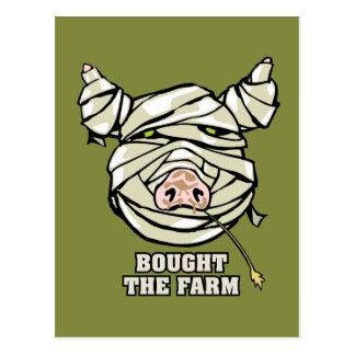 Pig Mummy Postcards