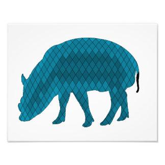 Pig Photo Print
