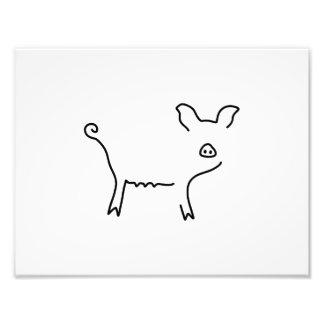 pig piglet sow