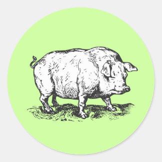 Pig Round Sticker