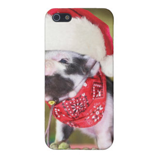 Pig santa claus - christmas pig - piglet iPhone 5 cover