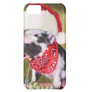 Pig santa claus - christmas pig - piglet iPhone 5C case