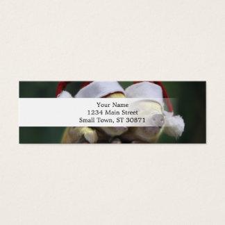Pig santa claus - christmas pig - three pigs mini business card
