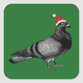 pigeon christmas square sticker