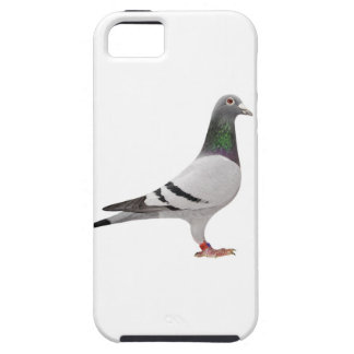 pigeon design case for the iPhone 5