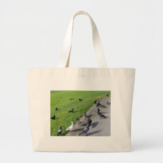 pigeon family reunion.JPG Large Tote Bag