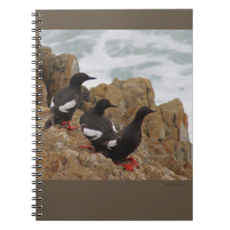 Pigeon Guillemots Spiral Notebook