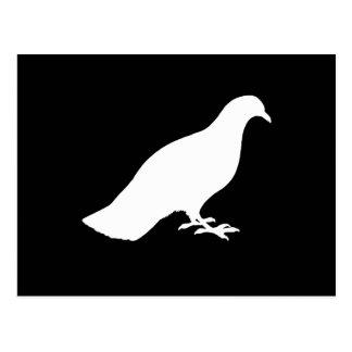 Pigeon Postcard