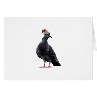 Pigeon Santa Hat Greeting Cards
