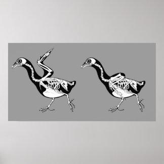Pigeon Skeletals Print