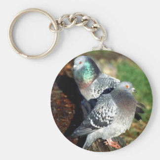 Pigeons Day Dreaming Key Ring