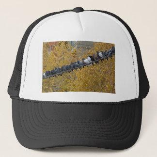 Pigeons Trucker Hat