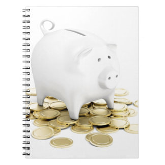 Piggy bank and coins notebooks