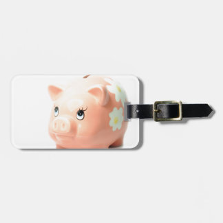 Piggy-bank Tags For Luggage