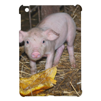 Piggy farm iPad mini cases