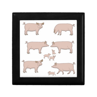 pigs gift box