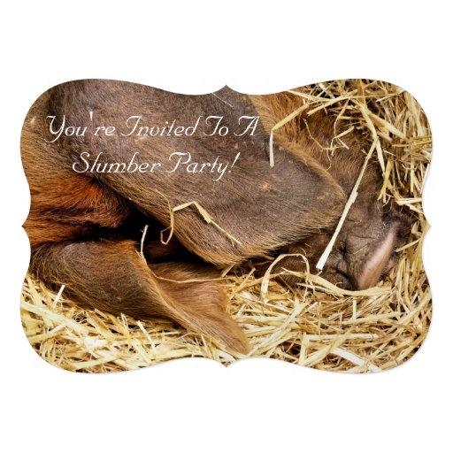 PIGS INVITES