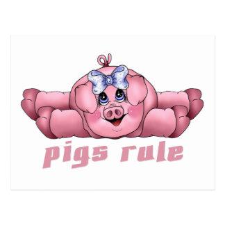 Pigs Rule Postcard