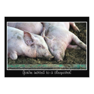 Pigs sleeping, sleepover invitation