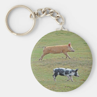 Pigs-will-fly keychain