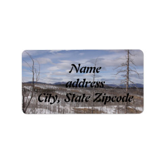 Pike Forest Address Labels