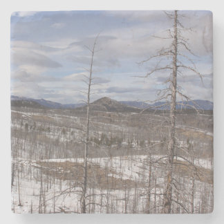 Pike Forest Marble Stone Coaster