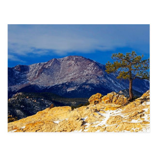 Pikes Peak and Lone Tree Postcard