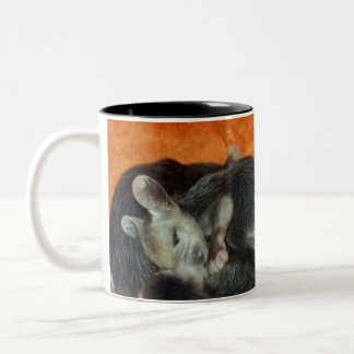 Pile of Baby Opossums Two-Tone Mug