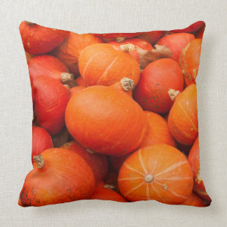 Pile of small pumpkins, Germany Cushion