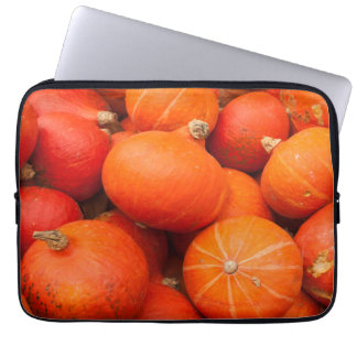 Pile of small pumpkins, Germany Laptop Computer Sleeve