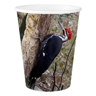 Pileated Woodpecker Paper Cup