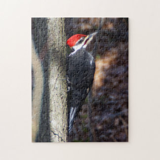 Pileated Woodpecker Puzzle