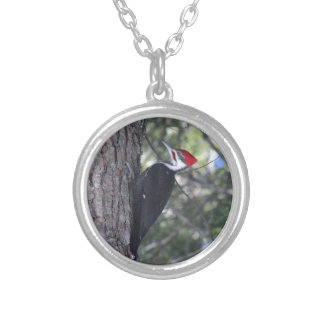 Pileated Woodpecker Silver Plated Necklace