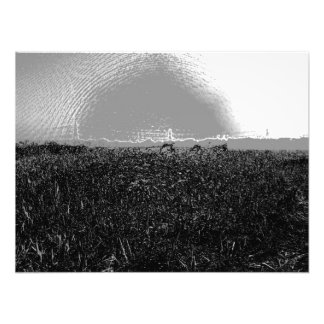 Piles of dry grass stretch into the distance art photo