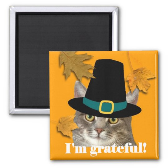 Pilgrim kitty magnet