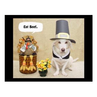 Pilgrim Myrtie Postcard