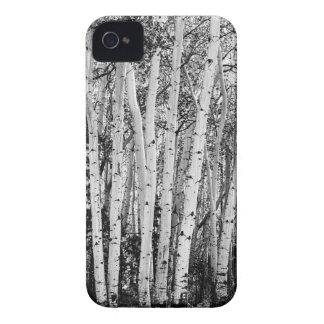 Pillars Of The Wilderness iPhone 4 Case