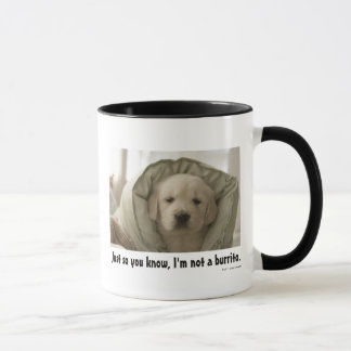 Pillow around dog mug