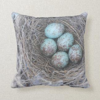 Pillow Bird's Nest Photography Nature Eggs