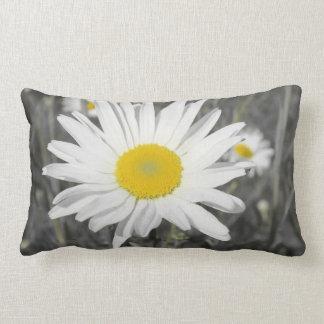 pillow,black, white, gray, still life, lumbar cushion