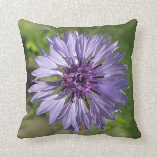 Pillow - Lilac/Purple Bachelor's Button