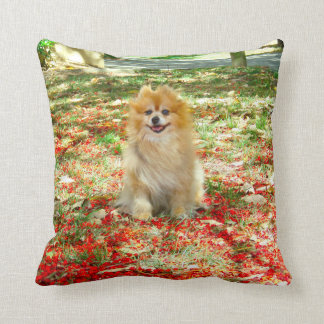 Pillow | Smiling Pomeranian Red Flowers