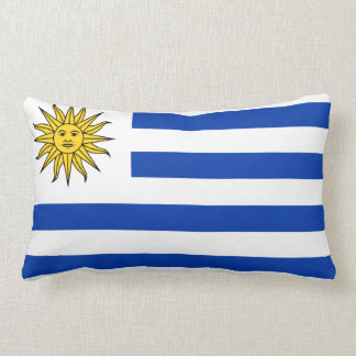 Pillow with flag of Uruguay