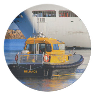 Pilot boat and cruise ship plate