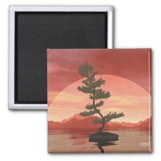 Pine bonsai - 3D render Magnet