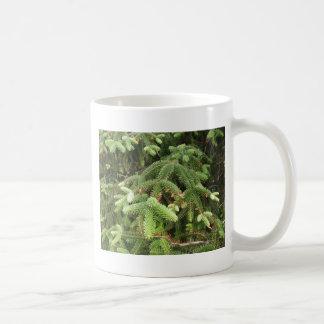 Pine Branches Coffee Mug
