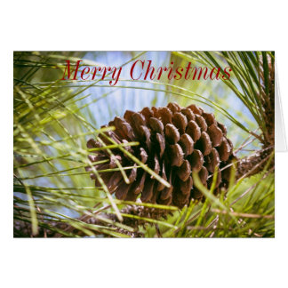 Pine Cone Christmas Card