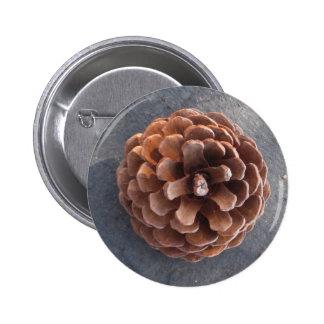 Pine Cone I Pinback Button