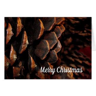 Pine Cone in Close-up Card