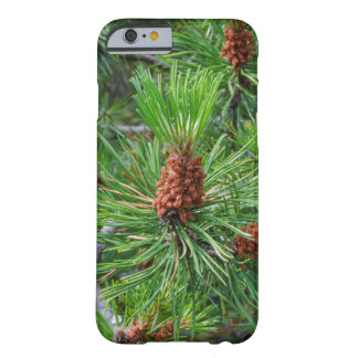pine cone iPhone 6 Barely There case